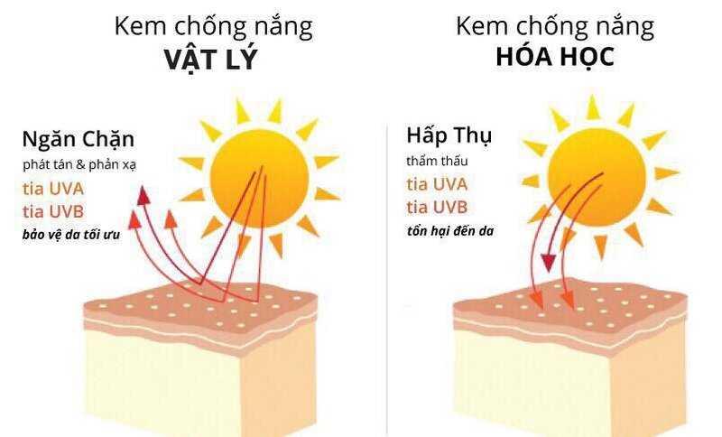 Phân loại kem chống nắng
